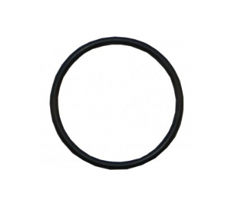 Lid 'O' Ring - Sta-Rite 5P2R Spares